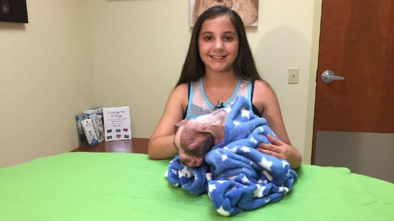 Girl Forgoes Birthday Gifts To Help Save Recovering Puppy Named Libre