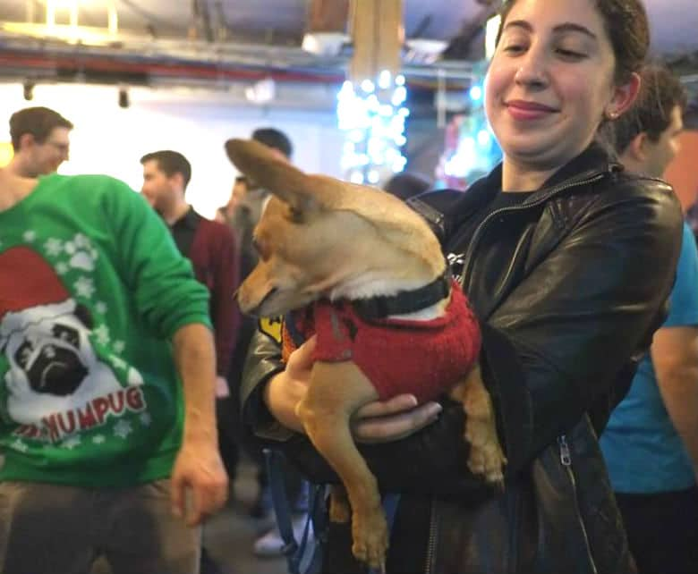 Beer, Gifts and Puppies: This Holiday Bazaar for Dog Lovers Will Have It All
