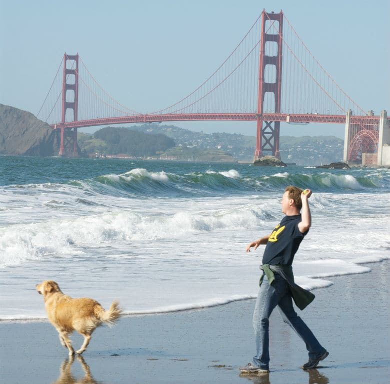 San Franciscans Release 'WoofieLeaks' to Show Bias With Park Service Over Dog Management Rules at GGNRA