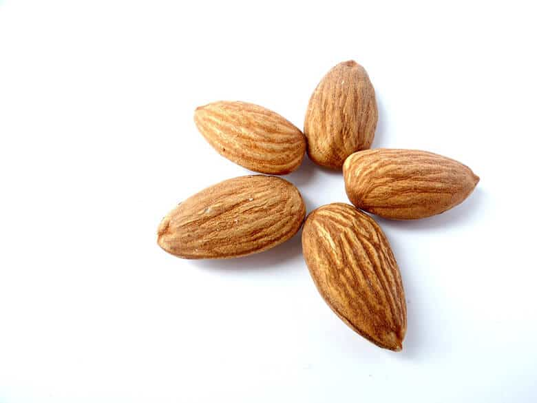Going Nuts: Can Dogs Eat Almonds?