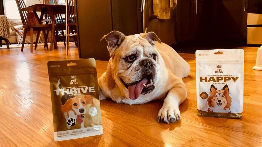 This Startup Is Looking to Make CBD Part of Your Dog's Everyday Life