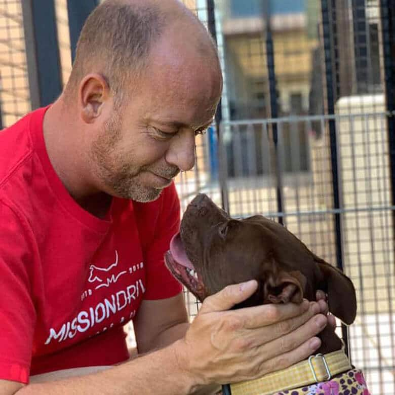 Dog in Shelter for 400 Days Gets Adopted