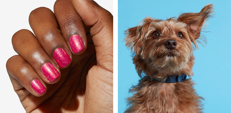 New Nail Polish Collection Inspired By Famous Rescue Dogs