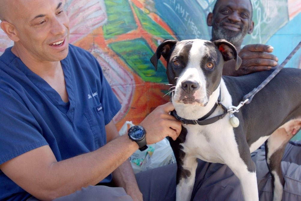 Meet the Vet Providing Free Medical Care to Homeless People's Pets