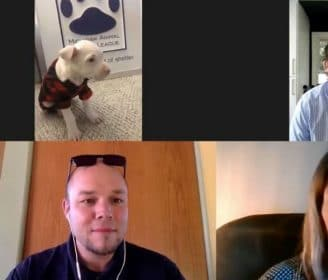 Adoptable dogs on video chats 1