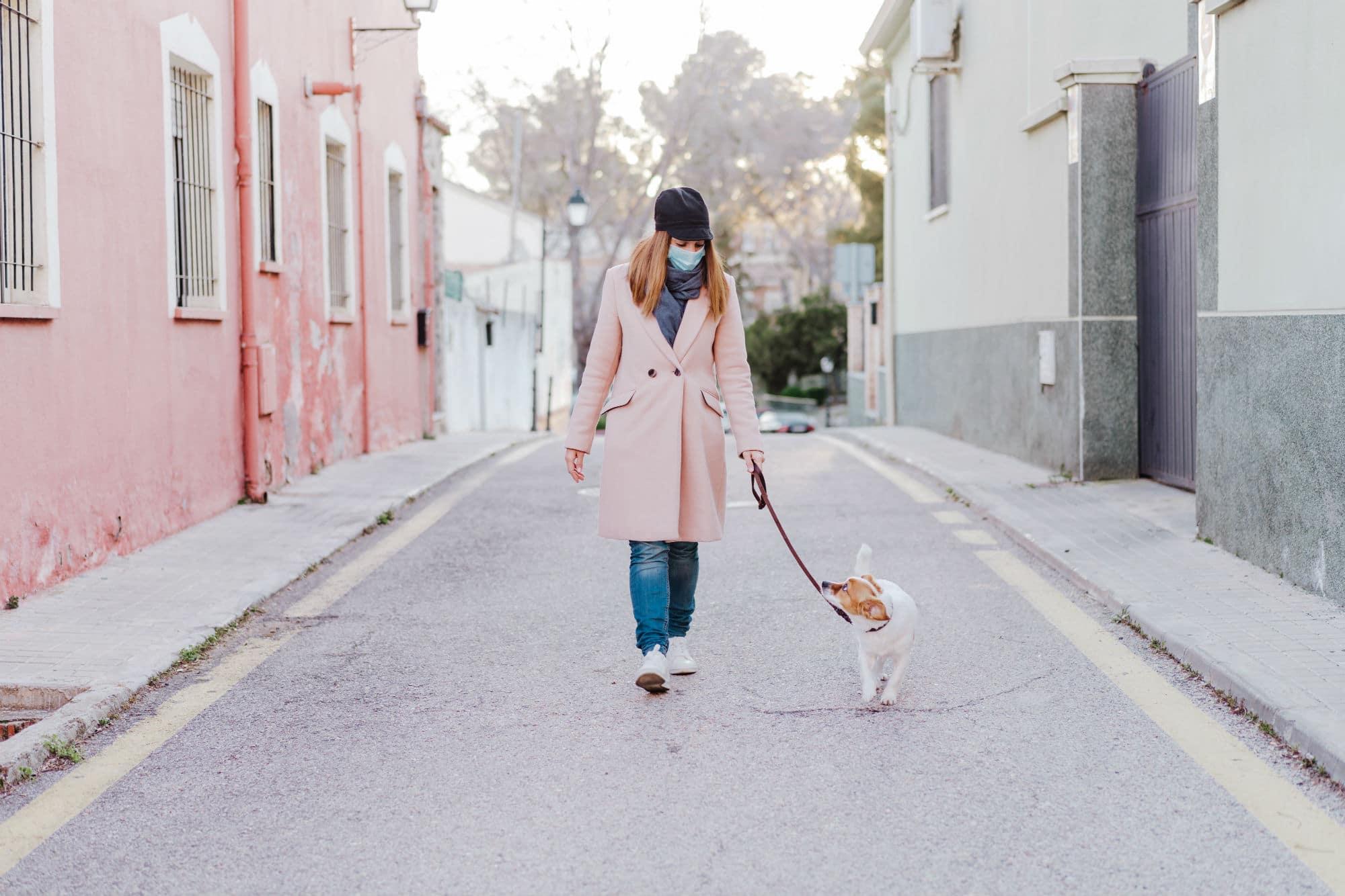 how to walk your dog during the coronavirus