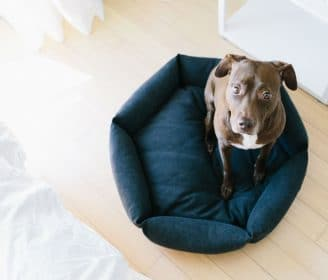 Velvet Hippo Hexagon Bed