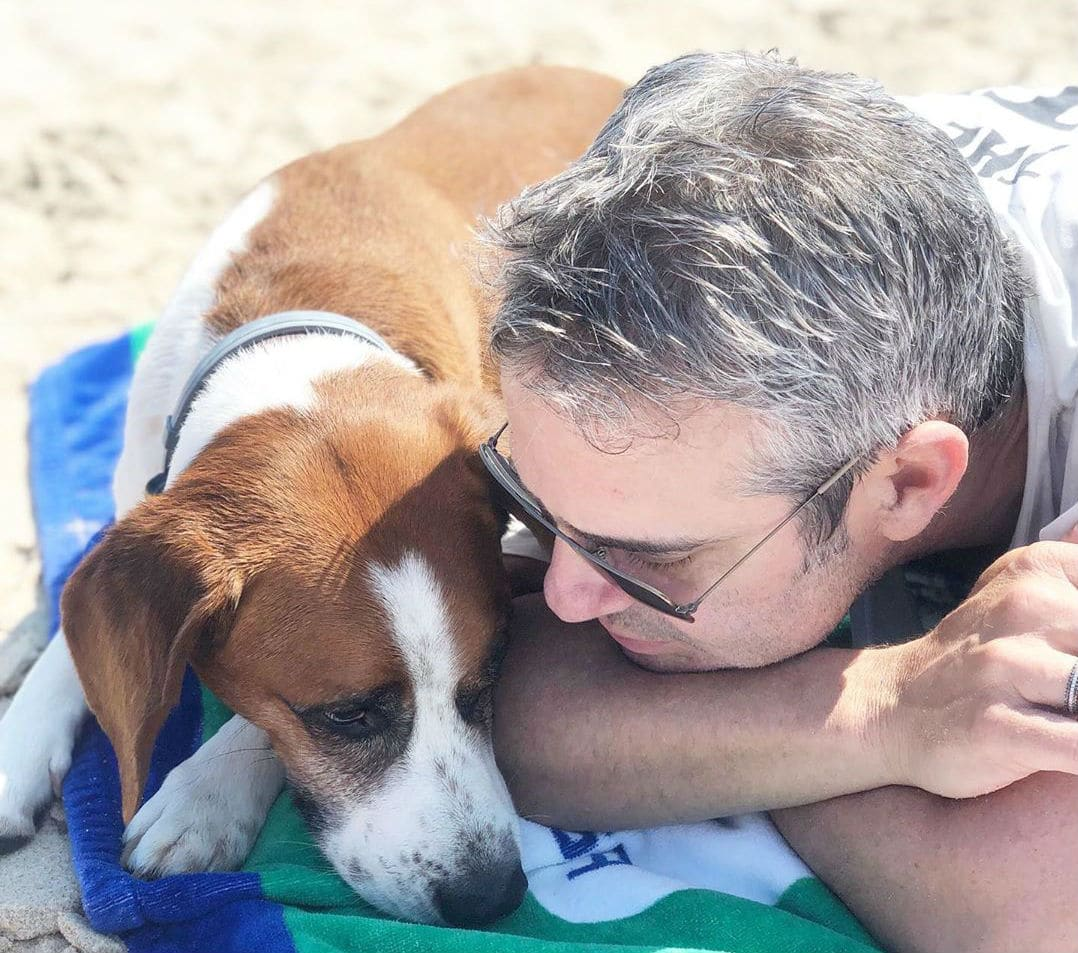 Andy Cohen Rehomes His Rescue Dog, Citing Possible 'Catastrophic' Outcome With Son