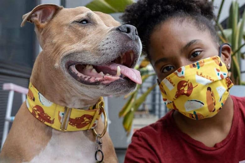 Scotch and Tea black-owned dog business