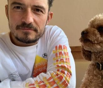 Orlando Bloom's Dog Is Missing