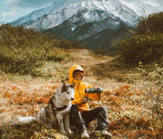 husky and dogs for outdoor adventures 1