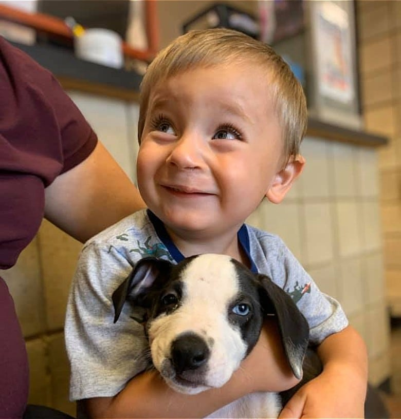 Both Born With a Cleft Lip, Boy and Puppy Form Instant Bond