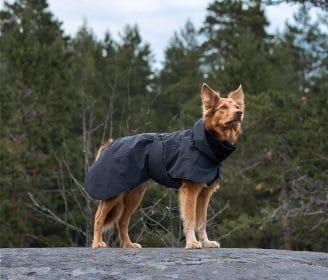 Paikka Winter Visibility Jacket in Black (2)