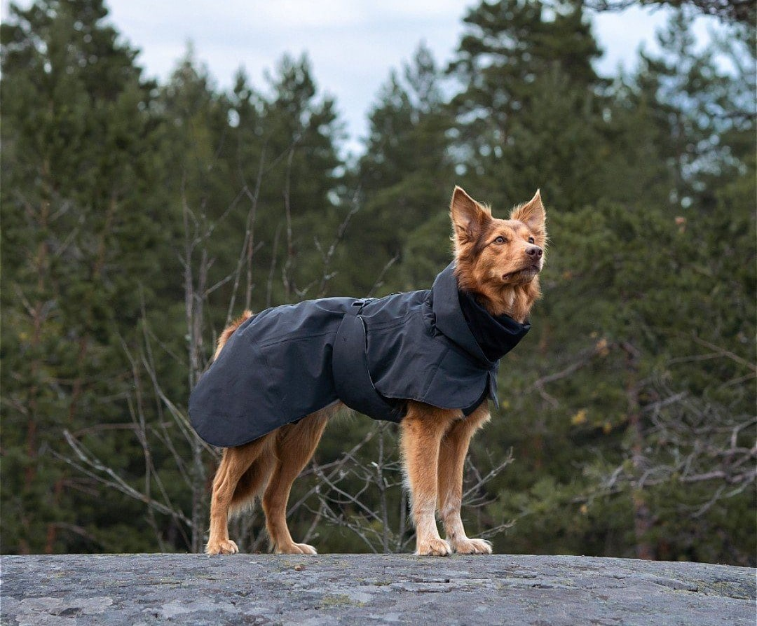Paikka Winter Visibility Jacket in Black (2)