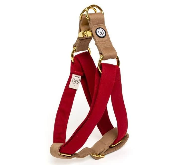 Two-Tone Canvas Easy Step-In Harness in Ruby Red and Latte Brown