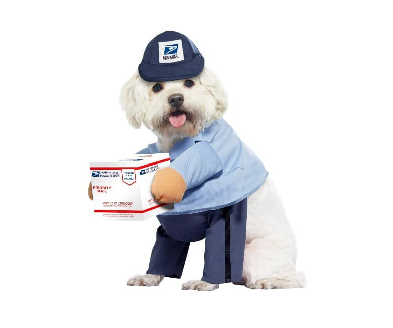 USPS Dog dog halloween costume