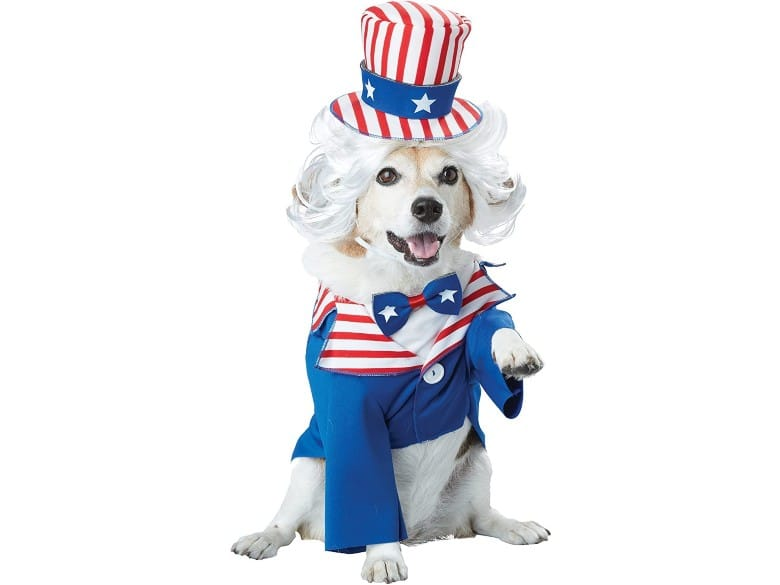 Uncle Sam Costume dog halloween costume (1)