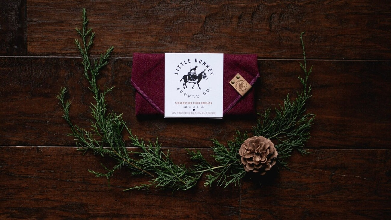 Holiday Gift Guide: 8 Perfect  Presents for Dog Lovers Under $50