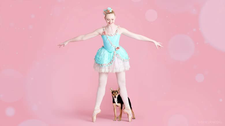 Muttcracker Dancers & Dogs dogs dancing with ballet dancers 4