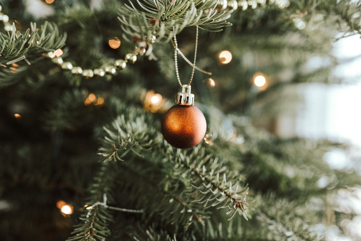 How to Dog-Proof Your Christmas Tree to Ensure Your Pup Has a Safe Holiday Season