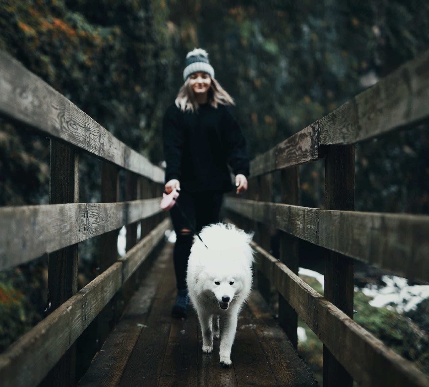 dogs and women