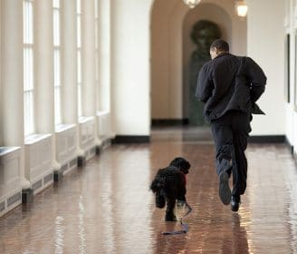 President Barack Obama and Bo