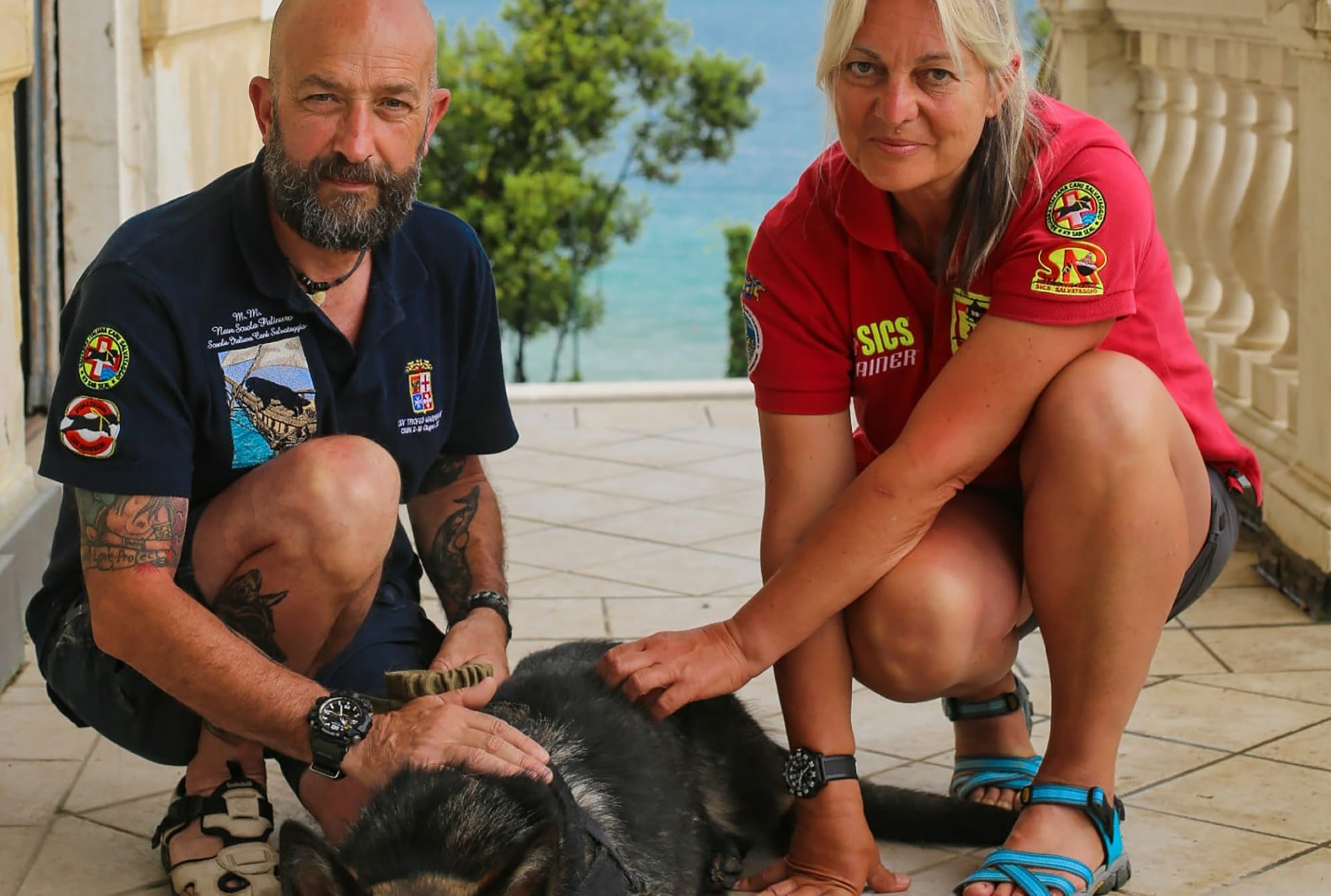 From Searching for Orcas to Protecting Rhinos, the Series 'Dogs with Extraordinary Jobs' Showcases Hero Pups