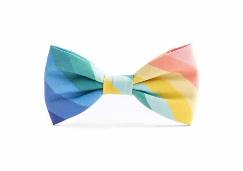The Foggy Dog Rainbow Bowtie