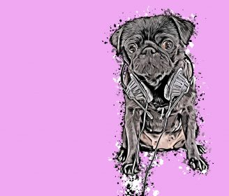 dealing with dog anxiety using music and videos