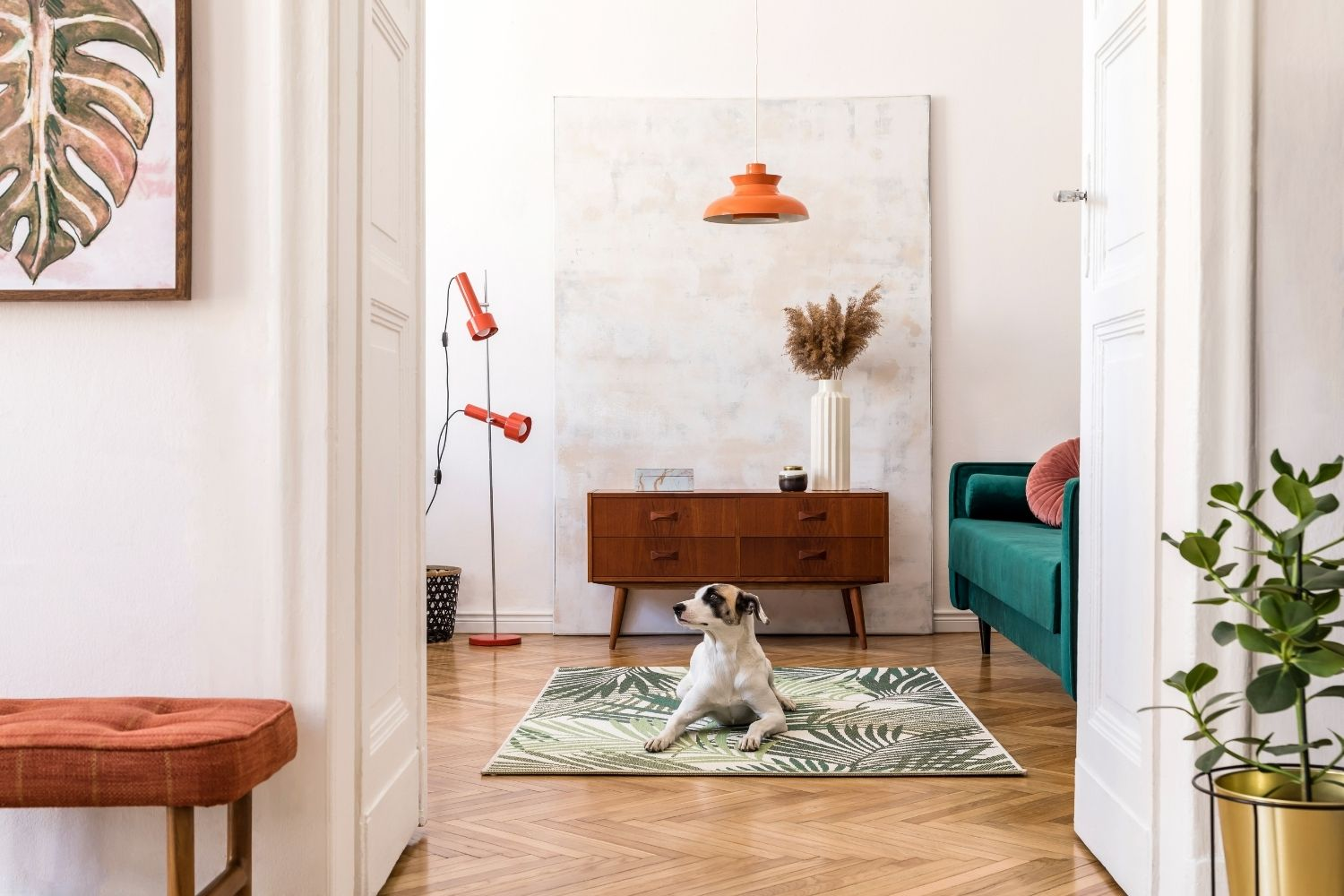How to Soothe Your Dog's Separation Anxiety When You Return to Work With Music and Videos