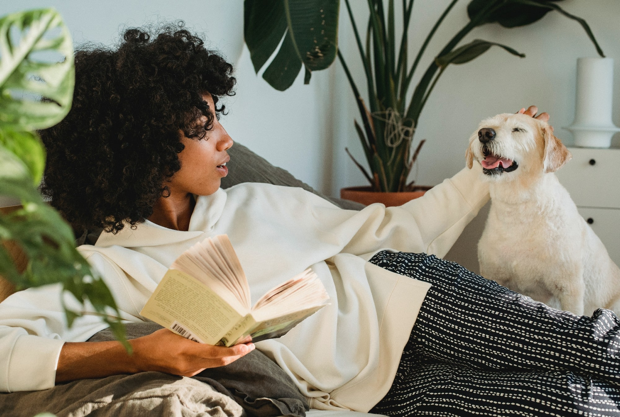 How to Find the Perfect Dog Sitter for Your Pup