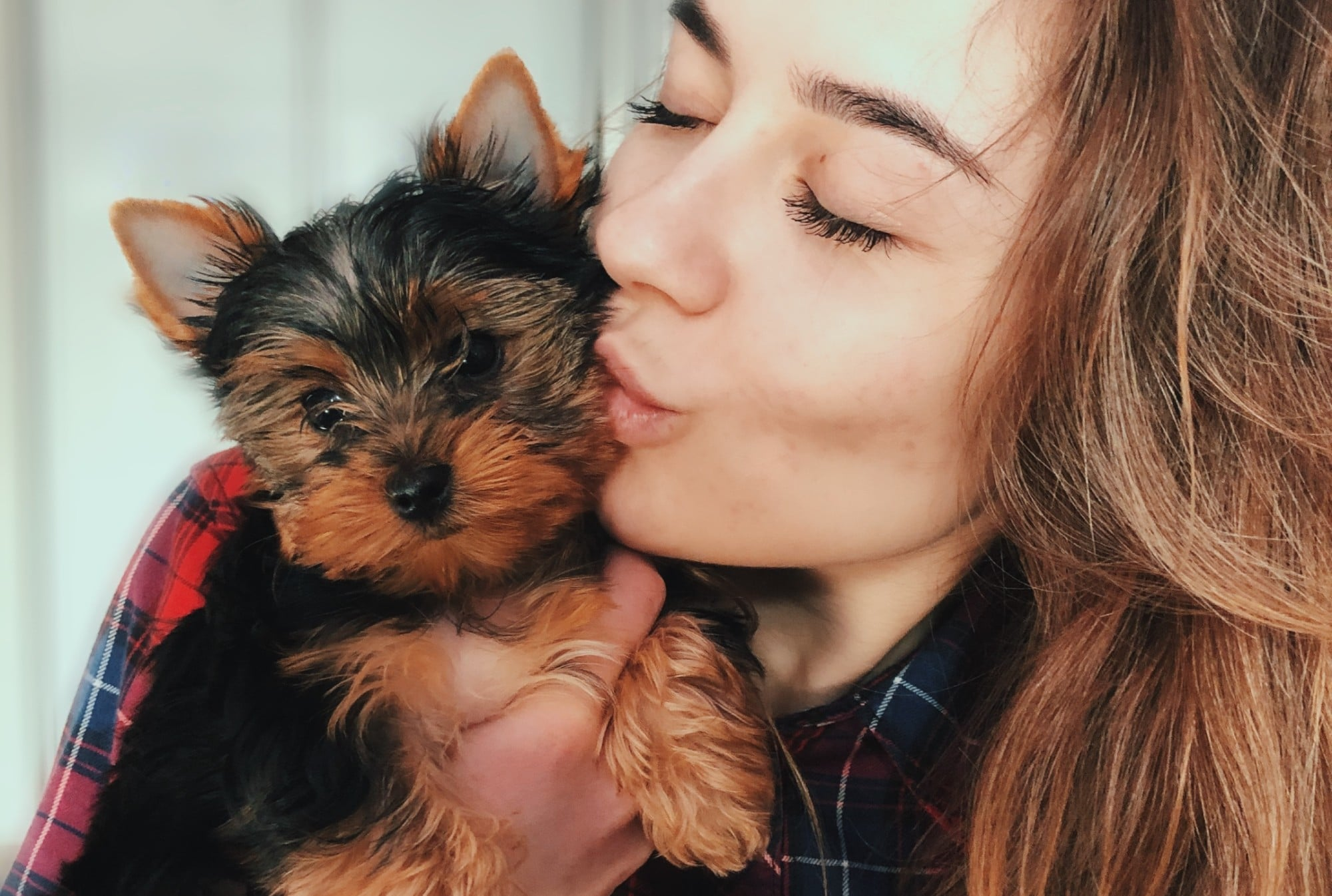 Celebrating National Dog Day With 10 Reasons Why Dogs Are the Best